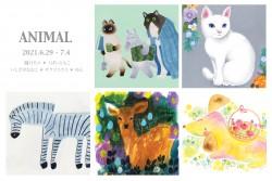 animal 表